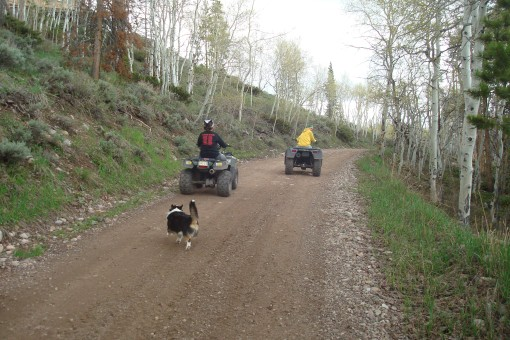 """Max running after Huh and Cousin """"C"""" on the atv's after they passed us."""