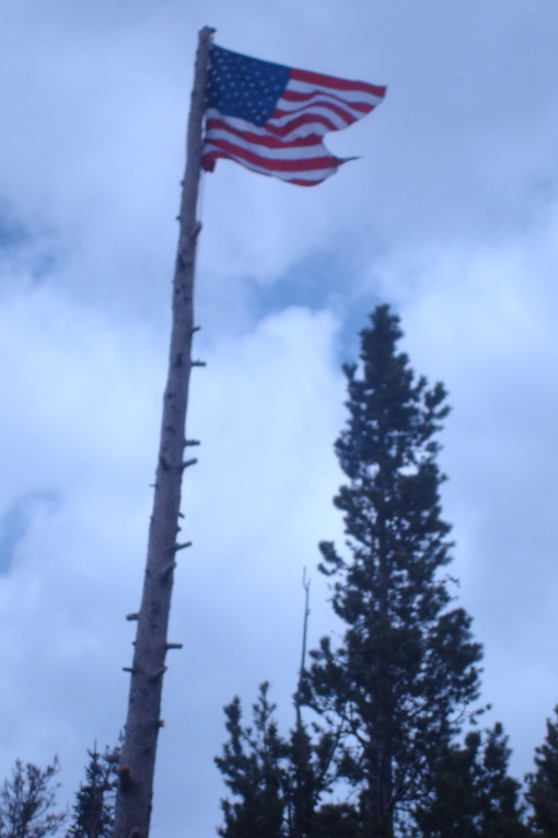 The flag pole dad made out of a tree.